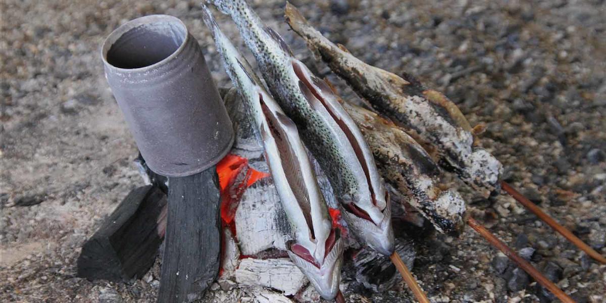 Fisch fangen Survival
