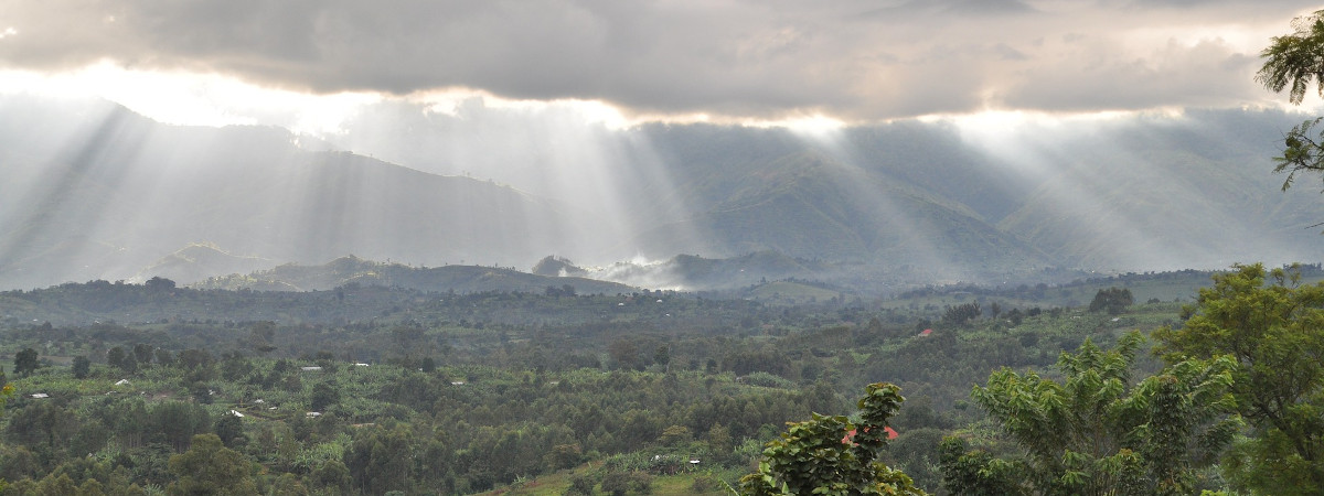 Ruwenzori Gebirge