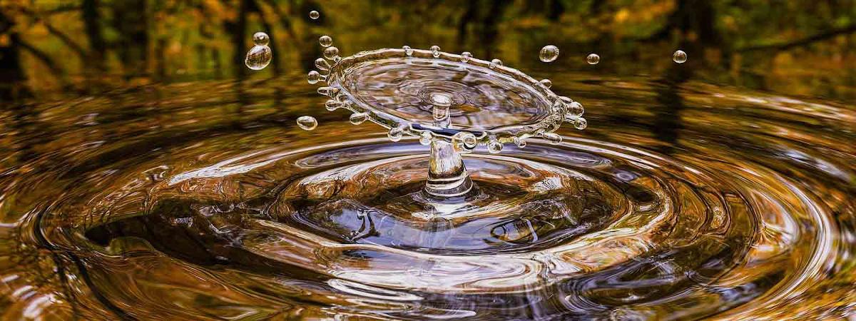 Wasser in der Wildnis finden
