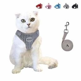 MICOOYO Katzengeschirr